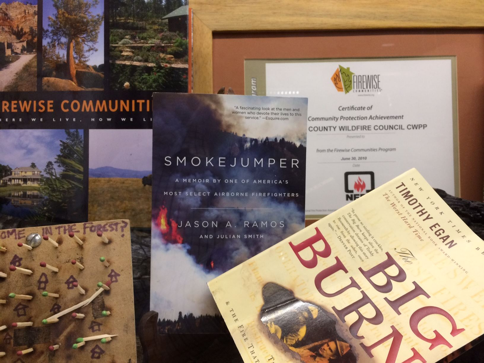 smokejumper_book_covers