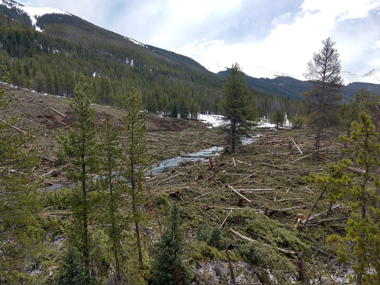 Avalanche debris in Tenmile Creek